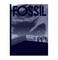 fossil-lienzo.jpg